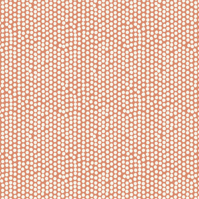 Spotty - Orange - £13.50 per metre