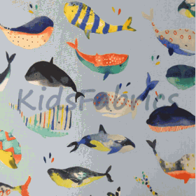 Whale Watching - Pacific - £ 11.95 per metre